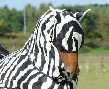 Buzz Off Zebra Fly Mask