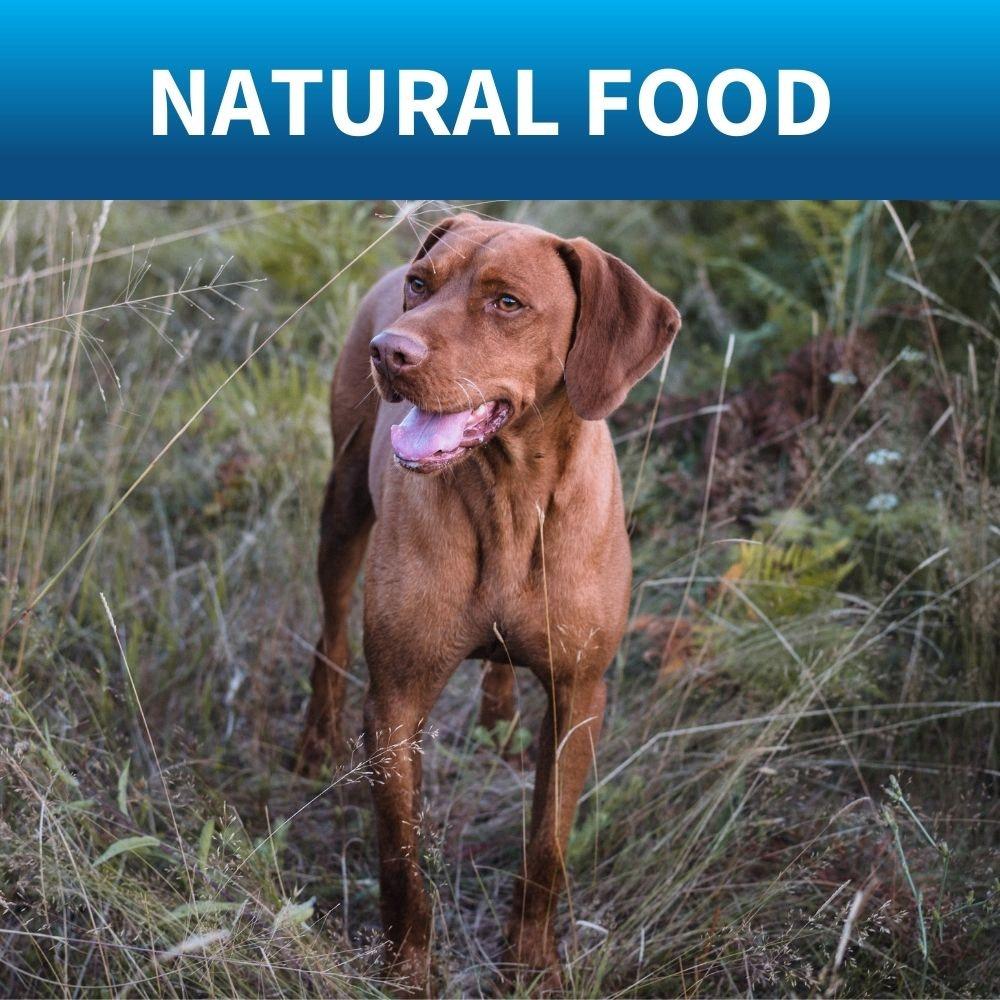 shop nasties free natural dog food