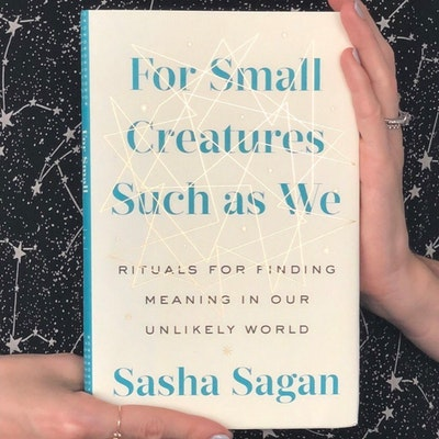 small-creatures-jpg
