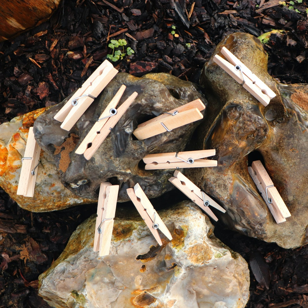 Natural Spa Supplies Wooden Clothes Pegs, 20 X Giant Beech Pegs