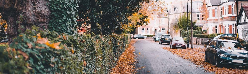 cars-parked-outside-on-street-with-autumn-leaves-around-jpg