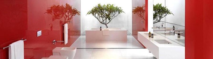 Innovative Bathrooms