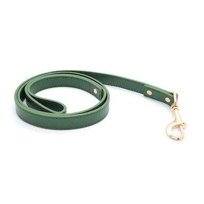 Petzy Green - Premium Pet Lead (Gold)