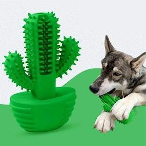DoggyTopia Cactus Enrichment Toy
