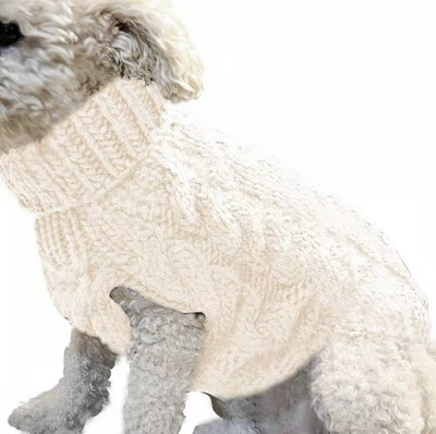 Indi Knitted Sweater White | Daniel's Pet Emporium