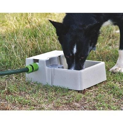 Automatic Pet Waterer BAINBRIDGE