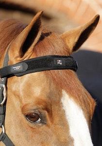 Premier Equine Magni-Teque Magnetic Browband