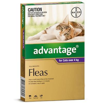 Advantage Large Cat 4kg Over Purple Spot On Flea Treatment - 3 Sizes