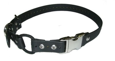 """E Collar Technologies 1"""" Quick Release Bungee Collar - For Remote Trainers"""