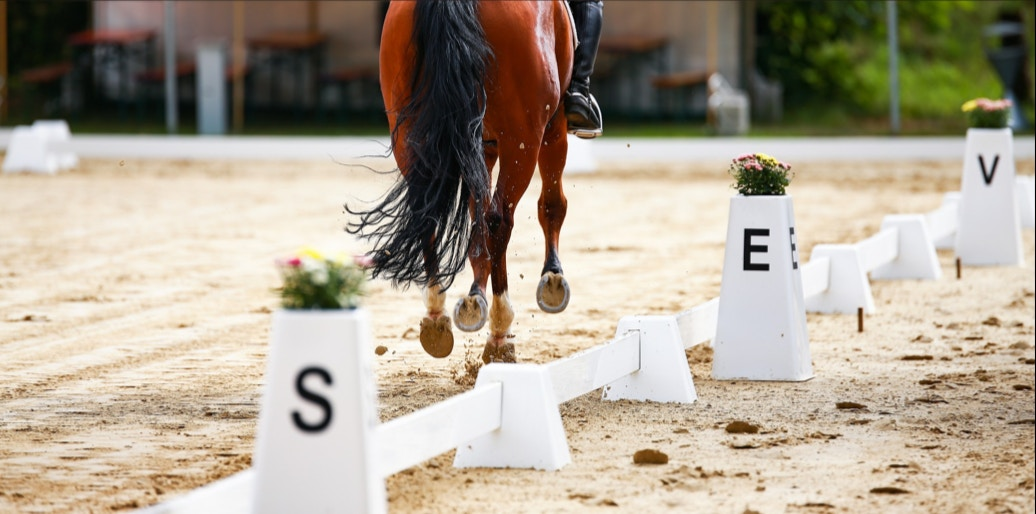 5 New Riding Exercises