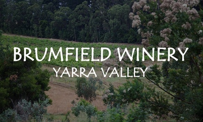 Welcome to Brumfield Winery