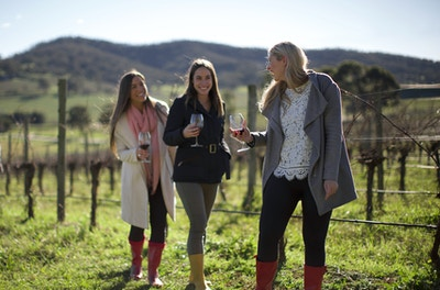 The Ultimate Yarra Valley Corporate Day Package - Drink, Eat, Share & Laugh