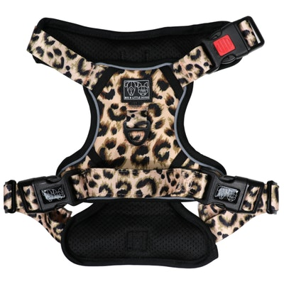 Big & Little Dogs Luxurious Leopard All Rounder Harness