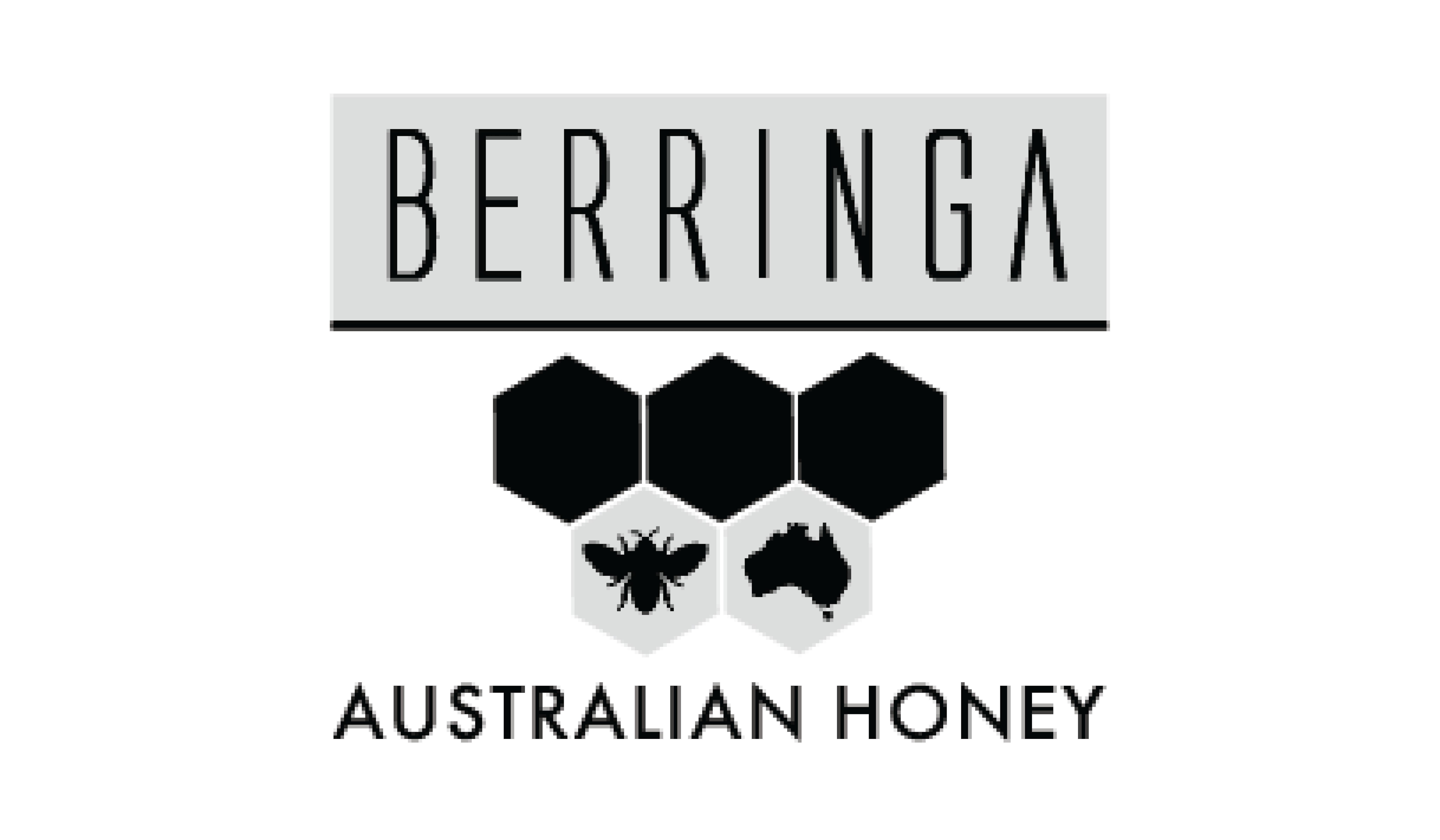 Berringa logo