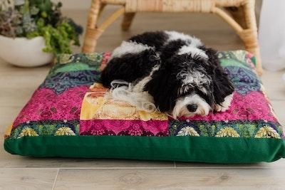 Mariska Multi Colour Pet Cushion