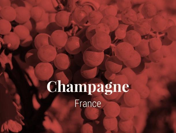 Champagne wine Region