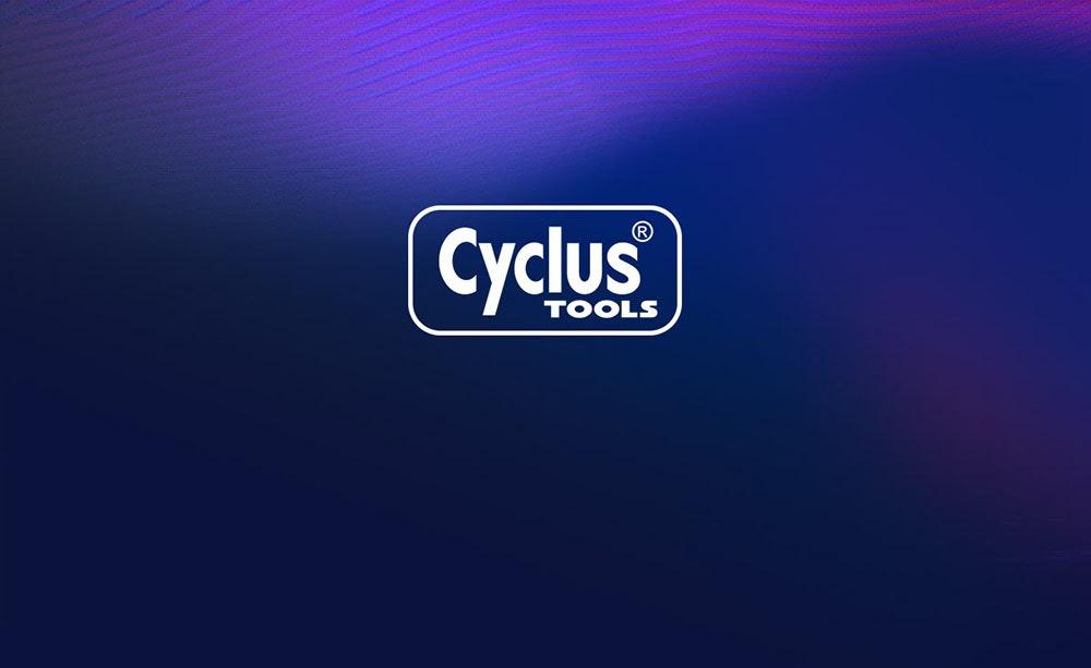 BikeChain-cyclus