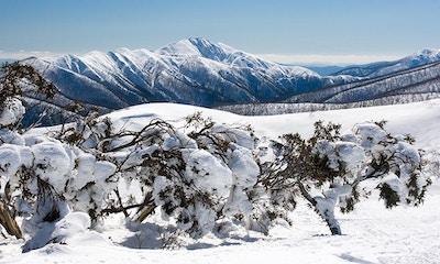 Pushing the Boundaries: backcountry skiing in Australia