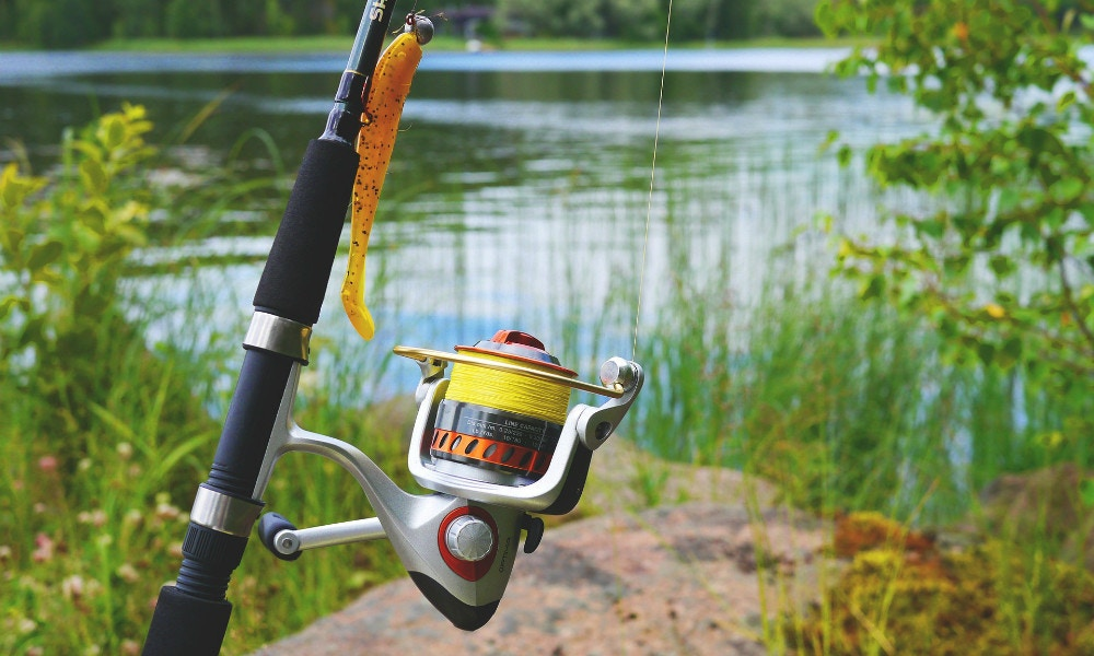 5 Reasons You Should Try Fishing with Soft Plastics