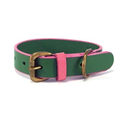 Georgie Paws Jersey - Emerald + Pink