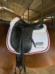 "Harry Dabb's XF Platinum Dressage Saddle 17.5"""