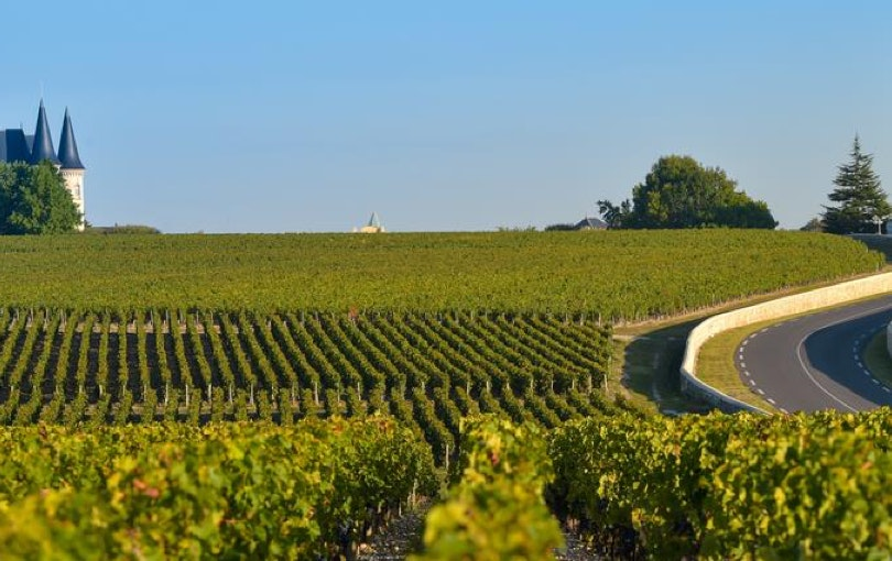Bordeaux wine region