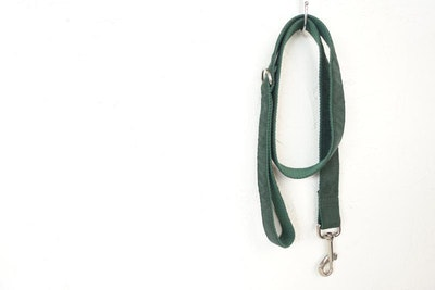 Barker & Bone Dog Leash | Dark Green
