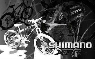 Shimano - Komponenten für alle Fälle