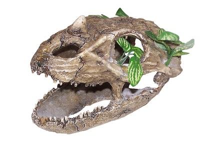 URS Skull w/ Small Teeth Reptile Enclosure Accessory Large