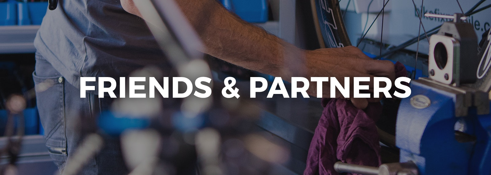Friends & Partners