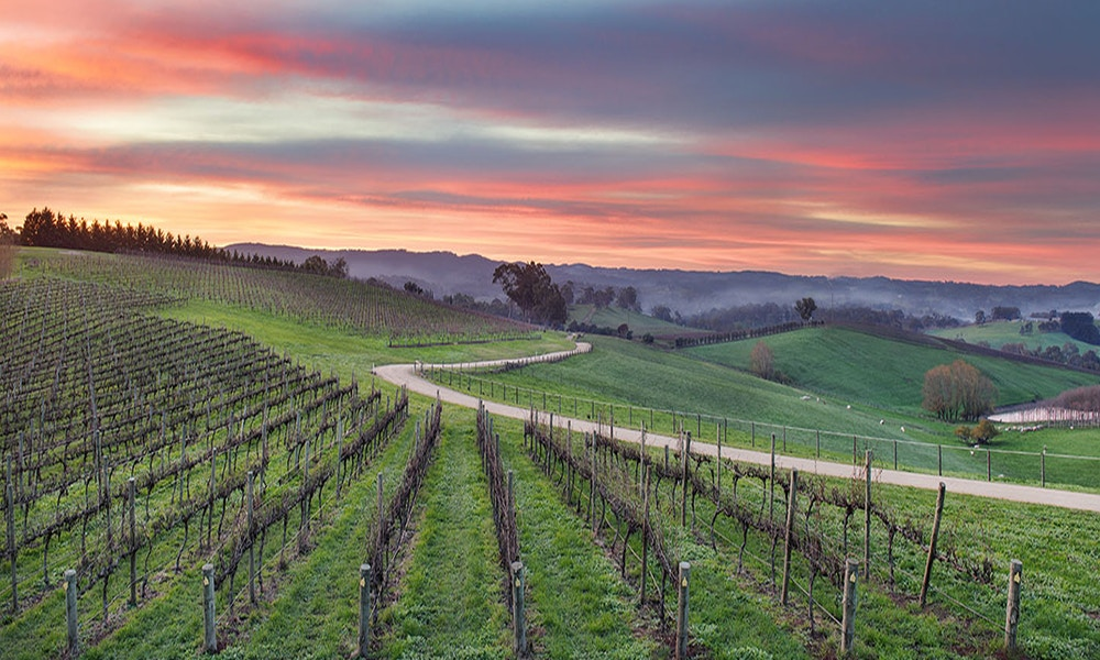 A Guide to the Adelaide Hills