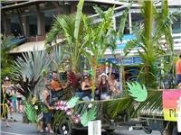 Reef Festival. Airlie Beach Queensland.