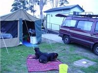 Agnes and Nick camp at pet friendly Park Lane and tour fresh, green Gippsland