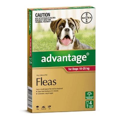 Advantage Flea Treatment 10-25kg Dog