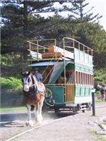 Victor Harbour horse-drawn tram.