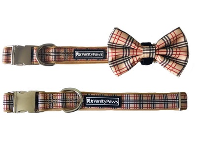VanityPaws Barkberry - Collar & Removable Bow