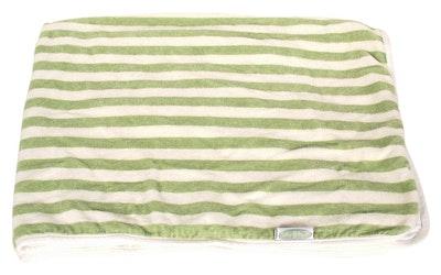 Silly Billyz Baby's First Organic Sage Towel