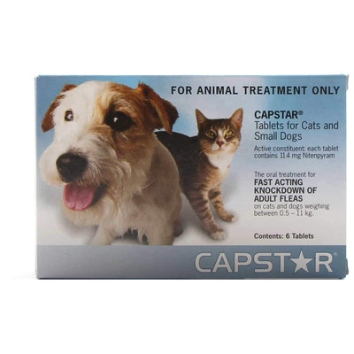 Capstar Flea Treatment <11kg Dog 6 Pack