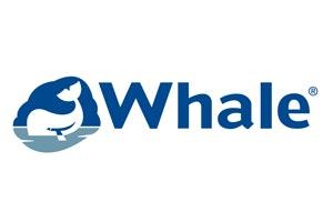 Whale Marine