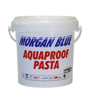 Morgan Blue Aquaproof Paste 1000CC