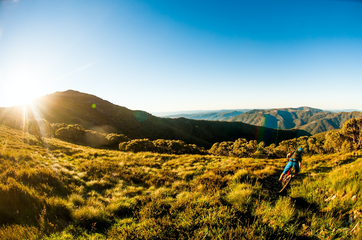MTB Summit and Alpine Epic Trail