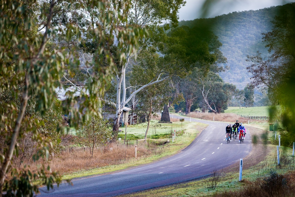 bunch riding king valley