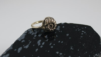 Robyn Heritage Jewellery Fossil, Golden Bronze Ring