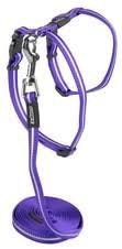 Rogz Alleycat 11mm Harness & Lead Purple
