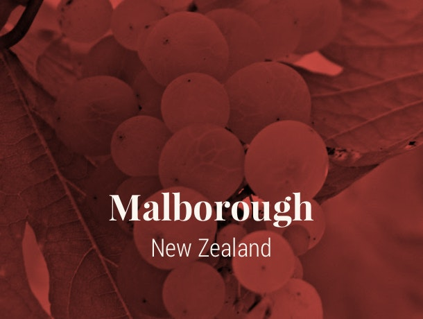 Marlborough, NZ Wine Region