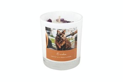 Kitty Kitchen Evoke Feline Ritual Candle