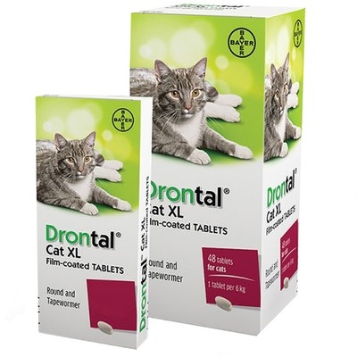 Drontal Tablet Allwormer for Large Cats & Kittens 6kg - 2 Sizes