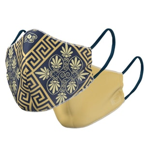 The Azteca - Reversible Face Mask