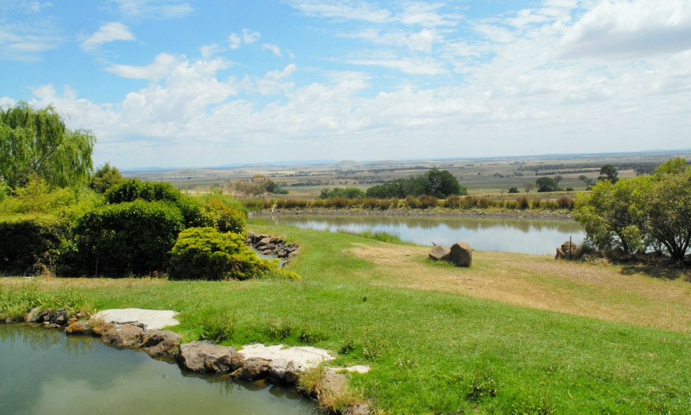 From the Pond to the Plate – Trout Farm North of Ballarat