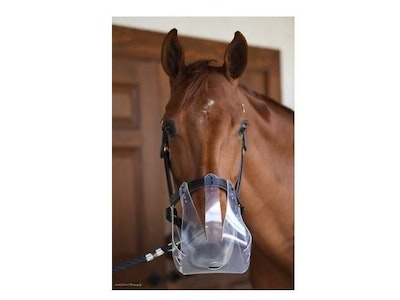 Flexible Filly Muzzle